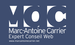 Marc-Antoine Carrier, Expert Conseil web
